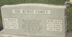 Mark Alan Burns