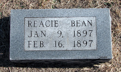 Reacie Bean