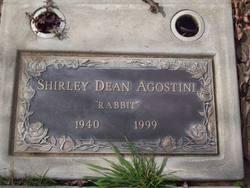 Shirley Dean Rabbit Agostini