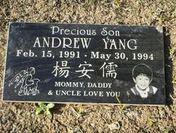 Andrew A.C. Yang