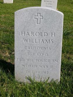 Helena T Williams