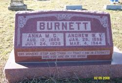Andrew W V Burnett