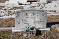 Lula <i>Davis</i> Burns
