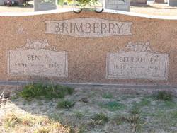 Benjamin Franklin Ben Brimberry