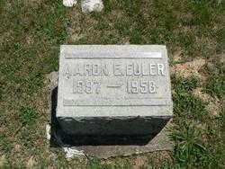 Aaron E Euler