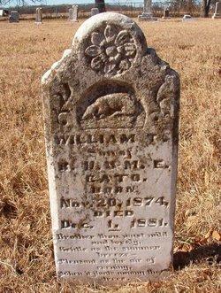 William T Cato