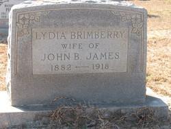 Lydia <i>Brimberry</i> James