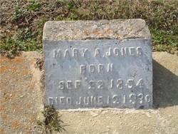 Mary Ann <i>Davis</i> Jones