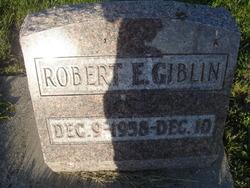 Robert Eugene Giblin