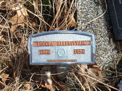 Thecla <i>Metzner</i> Allbritain
