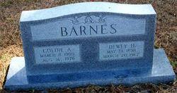 Goldie Ann <i>Holmes</i> Barnes