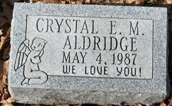 Crystal E.M. Aldridge