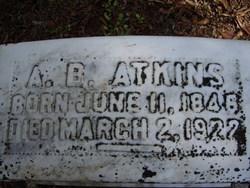 Andrew B. Atkins