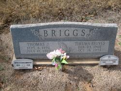 Thomas J. Briggs