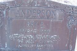 Roy E Anderson