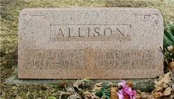 David Ellsworth Allison