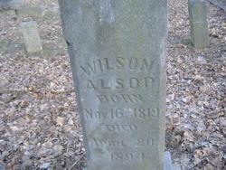 Wilson Alsop