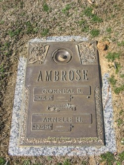 Arnelle H Ambrose