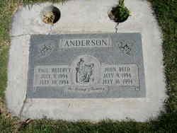 Paul Meservy Anderson