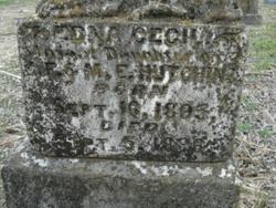Edna Cecil Hutchins