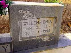 Willehmenia <i>Burden</i> Gray