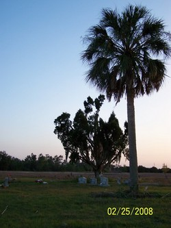 Whidden Cemetery