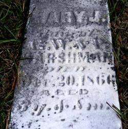 Mary J. Harshman