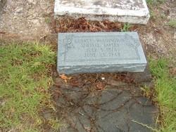 George Washington Sentell Tapley