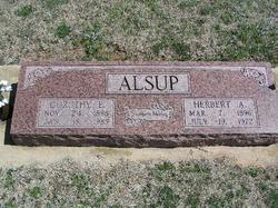 Herbert Anderson Alsup
