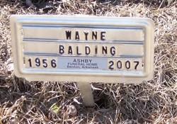 Wayne E Balding