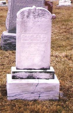Charles Levi Breighner