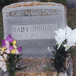Baby Bridges