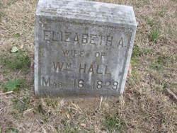 Elizabeth Ann <i>Tubb</i> Hall