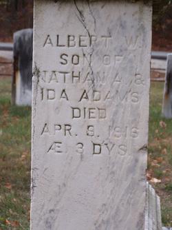 Albert W Adams