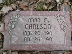 Anna Marie Carlson