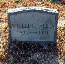 Pernicia Angeline <i>Allen</i> ALLEN