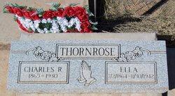 Petronella (Ella) Benson <i>Olsdotter (Olson)</i> Thornrose