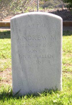 Andrew M Allen