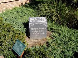 Anton Sonka