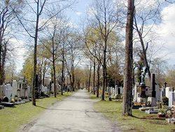 Westfriedhof M�nchen
