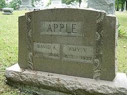 Amy Virginia <i>Hawes</i> Apple