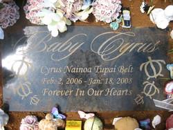 Cyrus Nainoa Tupai Belt
