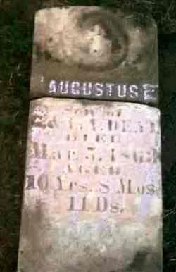 Augustus Bell