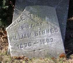 Alice <i>Turner</i> Barnes