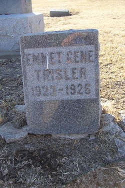 Emmet Gene Trisler
