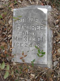 George E Farabee