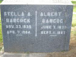 Albert Stevens Babcock