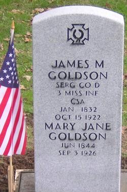 Mary Jane <i>Lewis</i> Goldson
