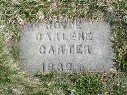 Joyce Darlene Carter