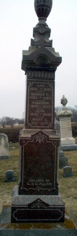 Hannah E. Allan